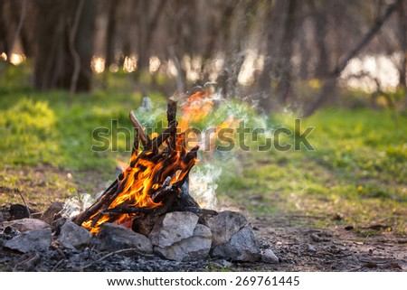 Bonfire in the spring forest. Coals of fire. Ukraine