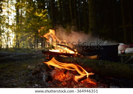 bonfire in the summer forest, photo of camping
