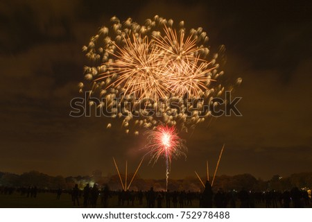 Bonfire night celebrations with a fireworks show at Sefton Park, Liverpool, UK. On 5th November #752978488