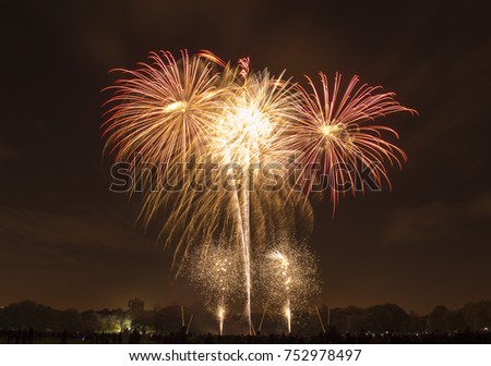 Bonfire night celebrations with a fireworks show at Sefton Park, Liverpool, UK. On 5th November #752978497