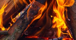 Bonfire. Orange flame of a fire. Burning birch tree in the fireplace. Bonfire on the grill with smoke. Arson or natural disaster. Bonfire close.. Bonfire background.