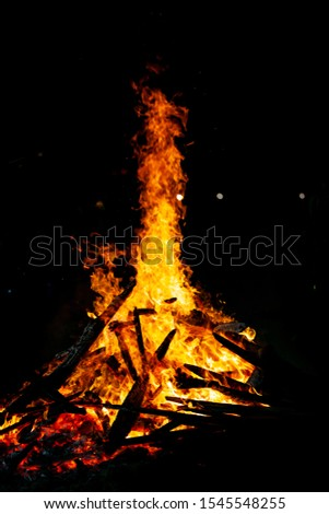 Bonfire that burns on a dark background, wood burning flame. #1545548255