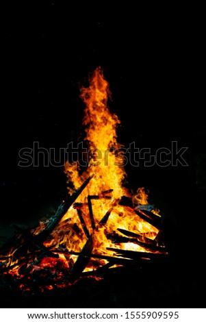 Bonfire that burns on a dark background, wood burning flame. #1555909595