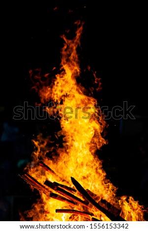 Bonfire that burns on a dark background, wood burning flame. #1556153342