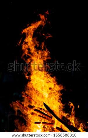Bonfire that burns on a dark background, wood burning flame. #1558588310