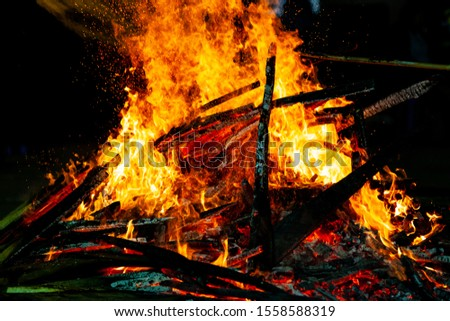 Bonfire that burns on a dark background, wood burning flame. #1558588319