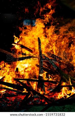 Bonfire that burns on a dark background, wood burning flame. #1559731832