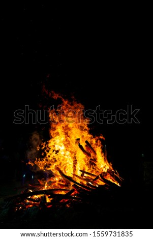 Bonfire that burns on a dark background, wood burning flame. #1559731835