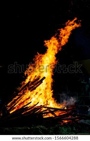 Bonfire that burns on a dark background, wood burning flame. #1566604288