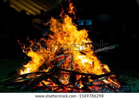 Bonfire that burns on a dark background, wood burning flame. #1569786298