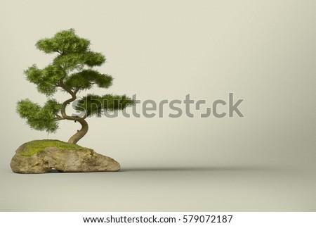 Bonsai Tree Сток-фото ©