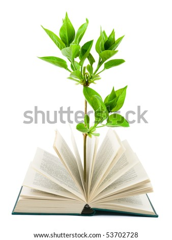Book and plant isolated on white background