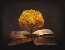 Book of life, knowledge, wisdom - old tree and its roots on open pages of a magic book;