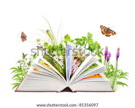 Book of nature. Isolated over white - stock photo