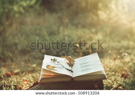 Book of poetry outdoors with flower on it Сток-фото ©