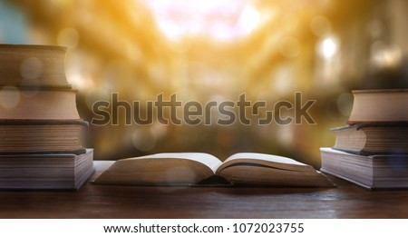book the library room learning Book stack Education back to school concept