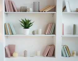 bookcase with pink and blue books. plant in pot. white interior. room decor.