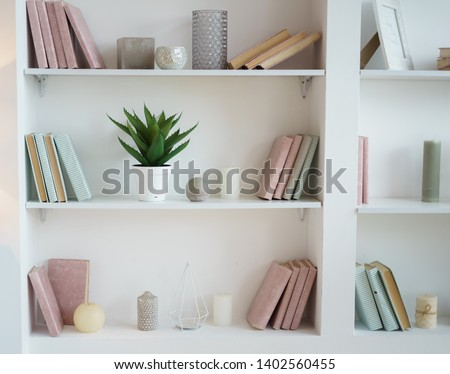bookcase with pink and blue books. plant in pot. white interior. room decor. Stockfoto ©