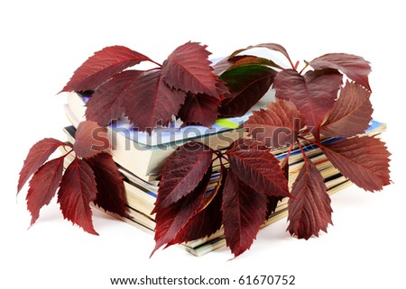 Books and magazines with red autumn grapes leaves. Isolated on white.