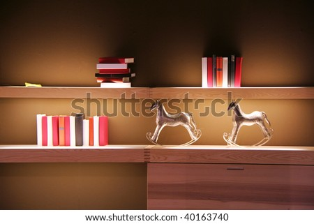 books on a shelf in the living room