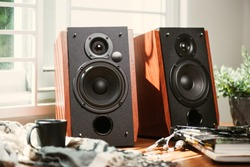 Bookshelf speaker system for home entertainment.
