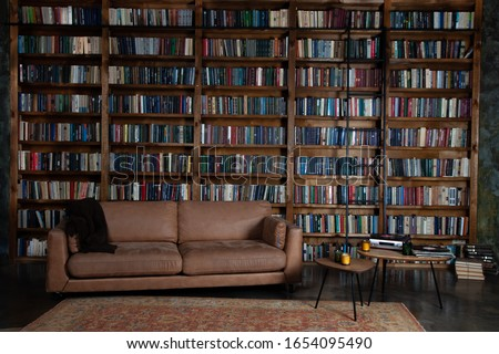 Bookshelves in the library. Large bookcase with lots of books. Sofa in the room for reading books. Library or shop with bookcases. Cozy book background. Bookish, bookstore, bookshop.