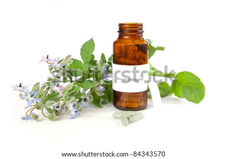 Borage herbal medicine, Borago Officinalis. The label was made for the photo shoot, no trademark or brand name copyright infringement issues.