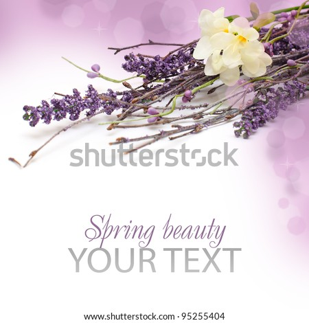 Border -  beautiful floral spring blossom isolated on white background