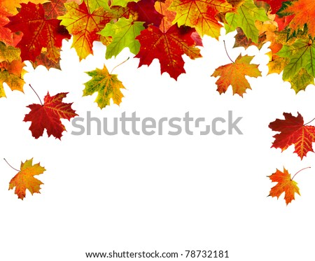 border frame of colorful autumn leaves isolated on white stock photo