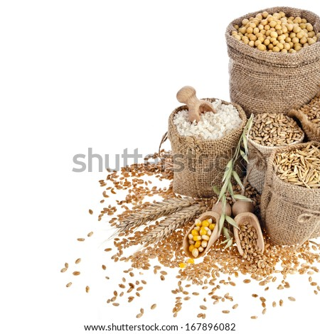Border frame of Corn kernel seed meal and grains in bags isolated on a white background