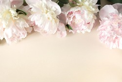 Border frame of pink and beige peony buds on light paper background. Frame of flowers for design of greeting cards on theme of wedding, Mother's Day, birthday, greetings. Floral background.