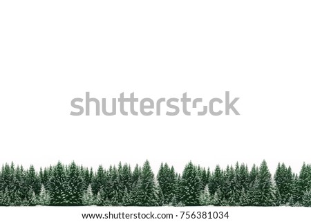 border frame of spruce tree forest covered by fresh snow during winter christmas time and new year