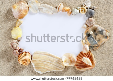 border frame with summer beach shells and blank copy space paper