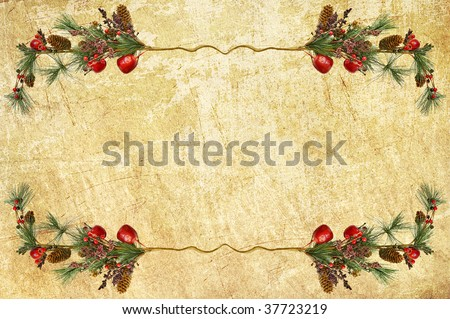 border from Christmas branches