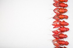 Border made from crayfishes, gray concrete background, copy space, horizontal,  top view