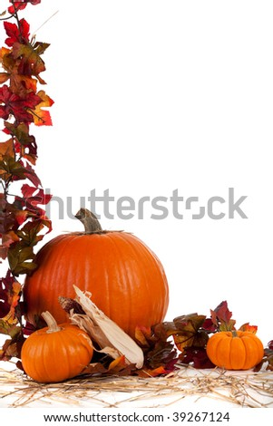Border of Assorted sizes of pumpkins with hay on a white background with fall leaves - stock photo