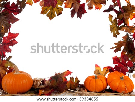 Border of Assorted sizes of pumpkins with hay on a white background with fall leaves
