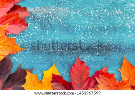 Border of autumn leaves on a blue textured background - a beautiful template for an autumn card or congratulations