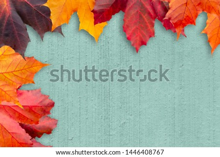 Border of autumn leaves on a green textured background - a beautiful template for an autumn card or congratulations