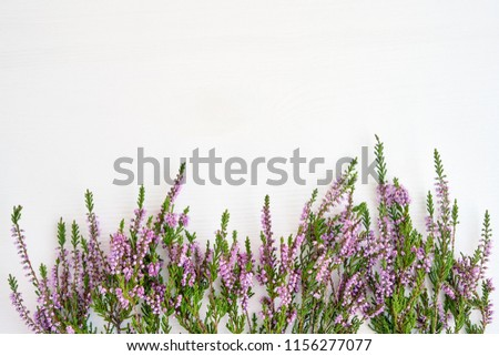 Border of common heather on white wooden background. Copy space, top view. #1156277077