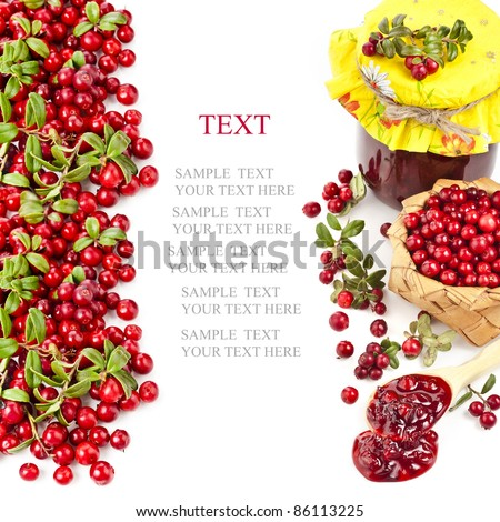 Border of cranberries produce with copy space isolated on white background