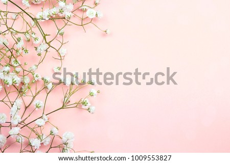 Border of delicate little white flowers on pink background from above. Space for text. Flat lay style.