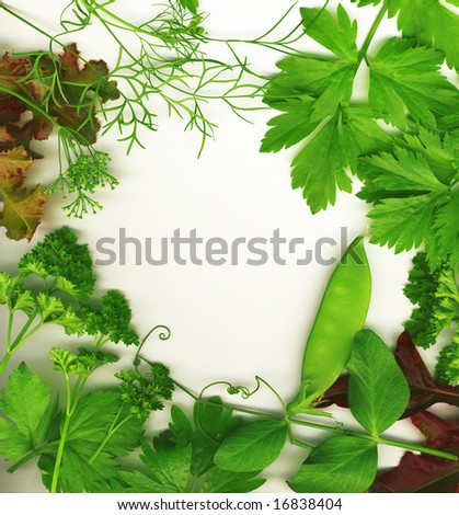 Border of fresh herbs, including dill, peas, basil, thyme, sage, parsley and oregano.