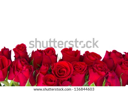 Border Of Fresh Red Garden Roses Isolated On White Background 136844603