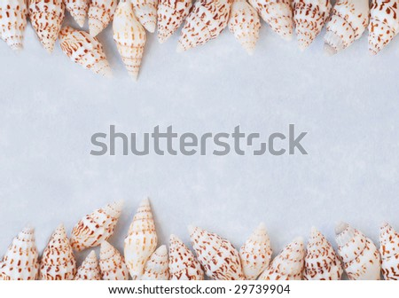 border of small conch shells on blue textured paper