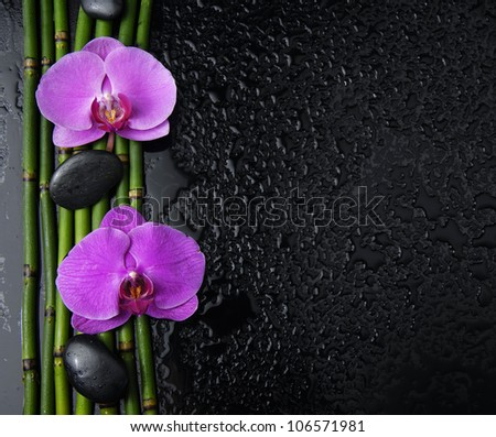 Border of stock image of the spa concept �two orchid, stones, bamboo grove