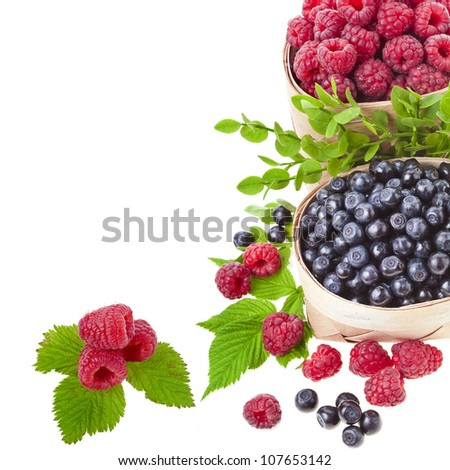 Border of wild berries ( blueberries , raspberries)  on white