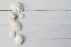 Border pattern of white British sea shells in a row on white painted floorboards, cockle shells, winkles and caycay, could be used for spa, wedding or seaside shabby chic