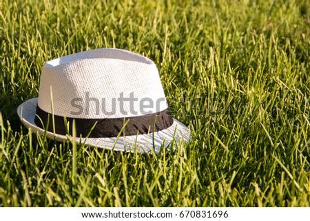 Borsalino hat in the grass Stock photo ©