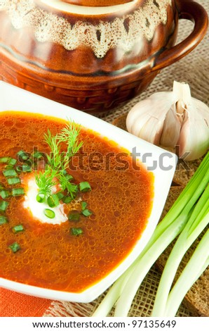 Borsch, soup from a beet and cabbage with tomato sauce. An onion with garlic